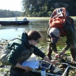 Field Assitant/Educator Intern assisting with eelgrass monitoring and with summer science camp.
